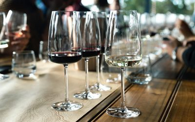 Wine Culture – Inspired to Start a Wine Shop